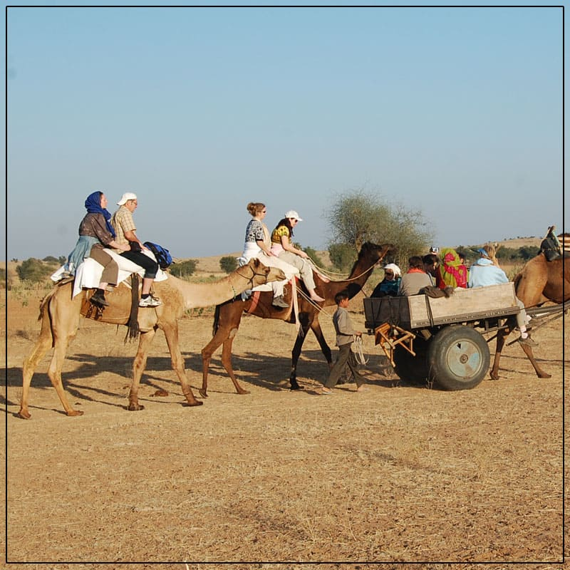 With The Assistance of The Prepared and Veteran Camel Handlers, We Help Our Visitors Take Ride On a camel In Dessert.