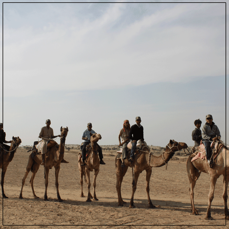 We provide a Camel Ride in Dessert For Our Guests.