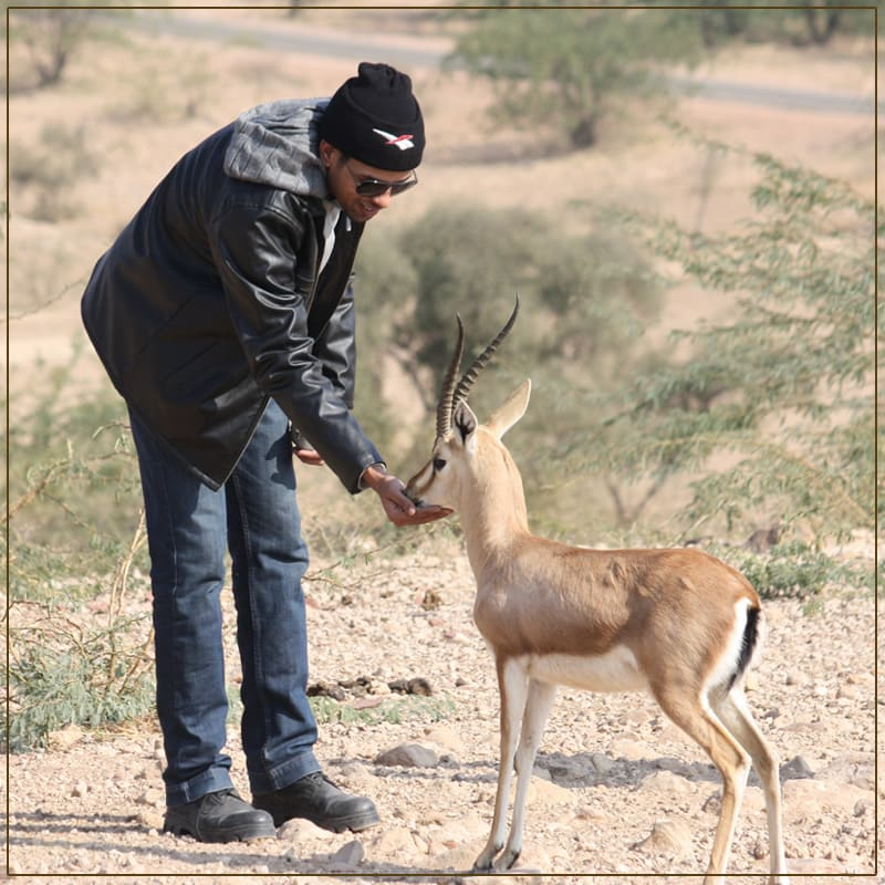 Visit The Famous wildlife sanctuaries in Jodhpur